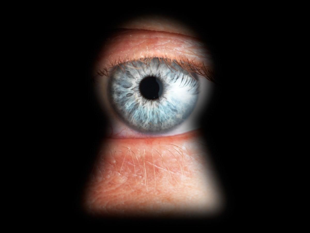 Google revela el espionaje del FBI a sus clientes