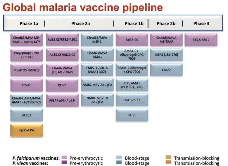 Ensayos clínicos vacuna