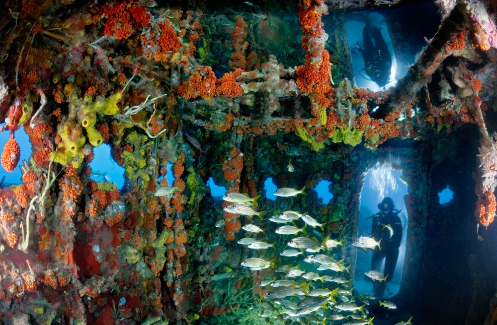 Arrecifes Artificiales