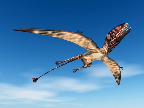 Dimorphodon-jurassic-world