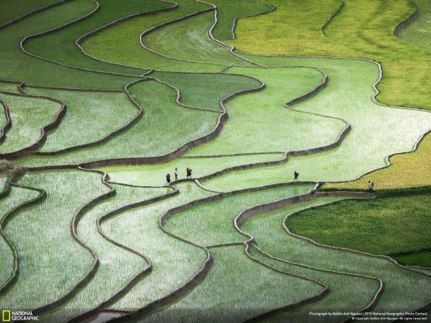 Créditos: Quỳnh Anh Nguyen