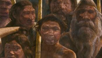 Los neandertales también podían comunicarse