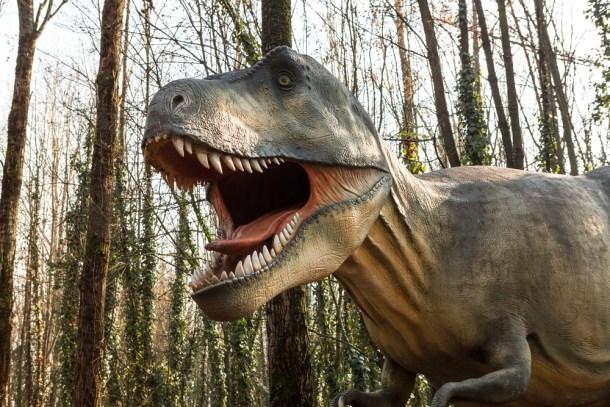 tiranosaurios