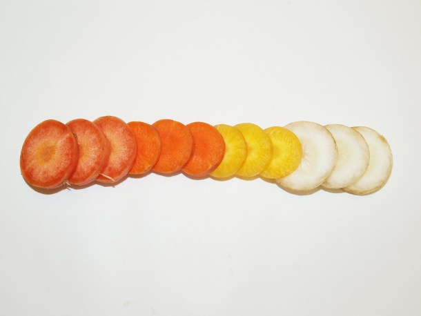 genoma de la zanahoria