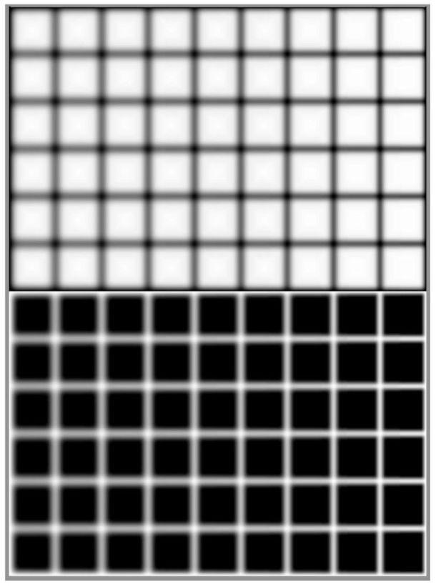 Ilusion óptica 1