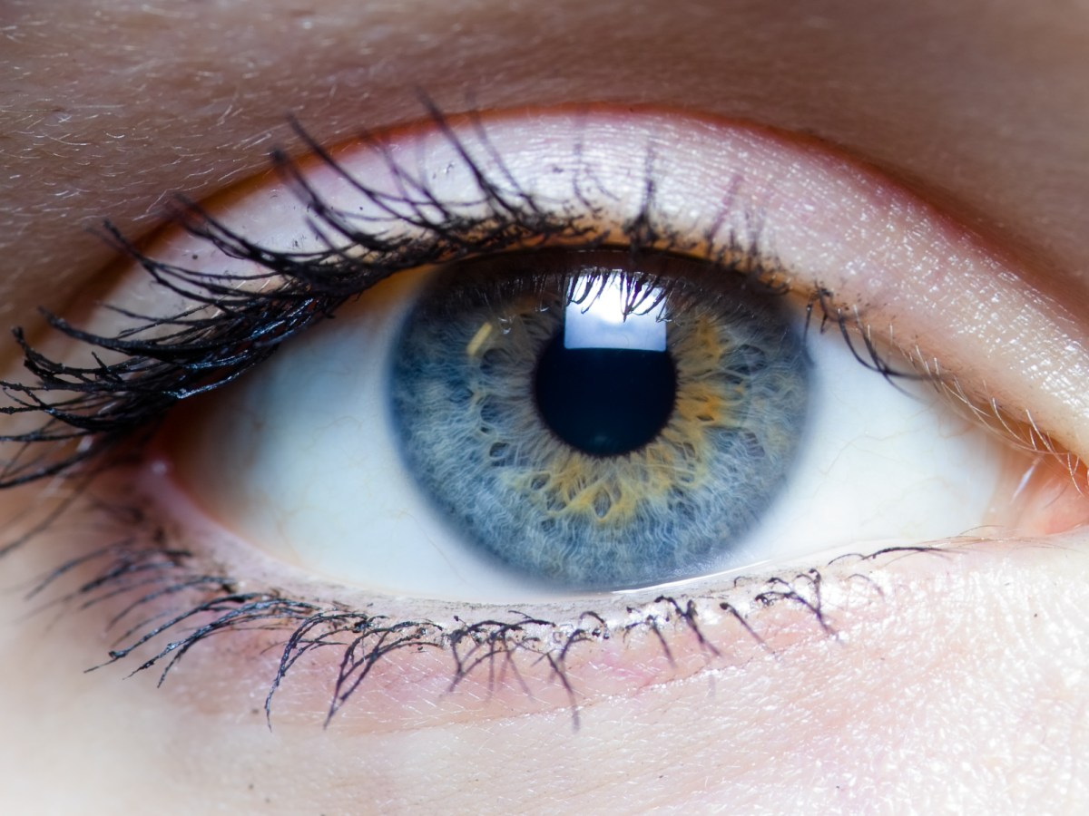 cáncer ojos