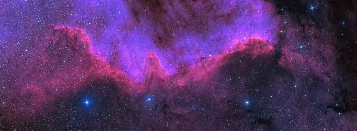 cygnus agujero negro