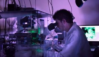 ciencia en cataluña