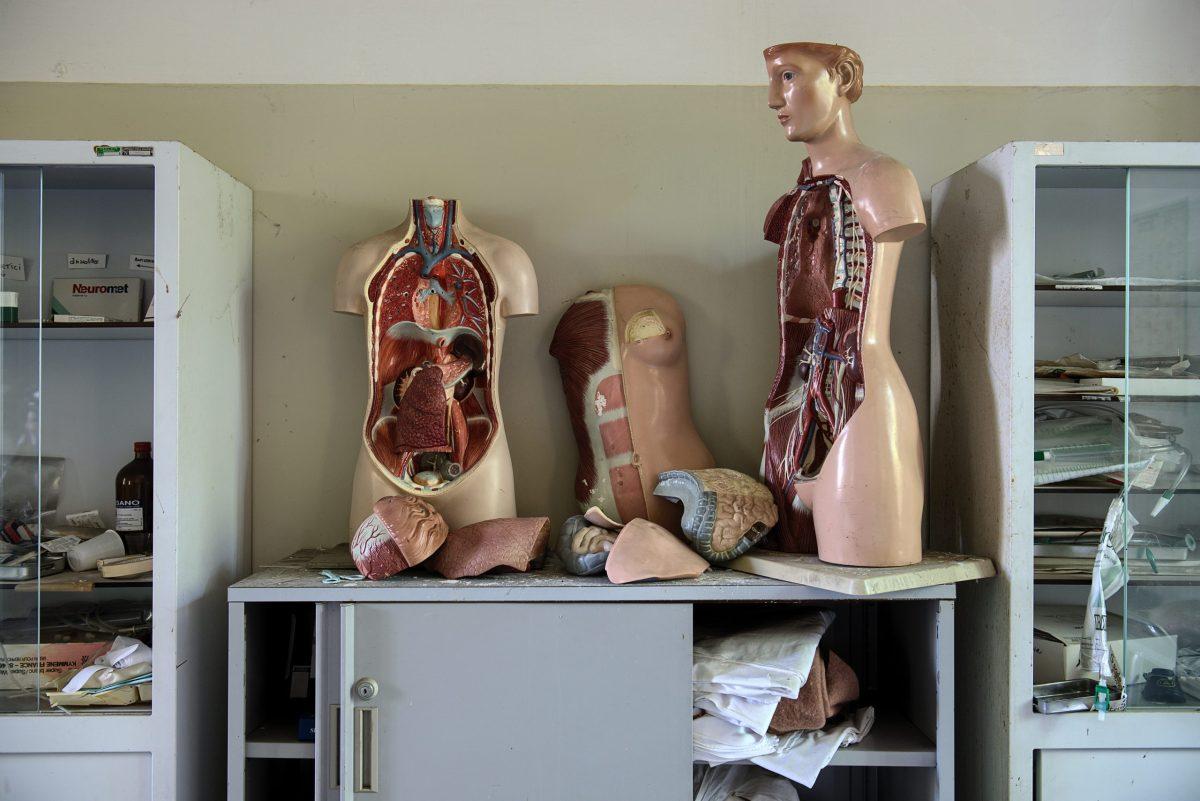 cuerpo, cuerpo humano
