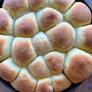 Rapid Dinner Rolls that only require a 20 minute rise? I'm in! These dinner rolls are so delicious! We hope you try the recipe!