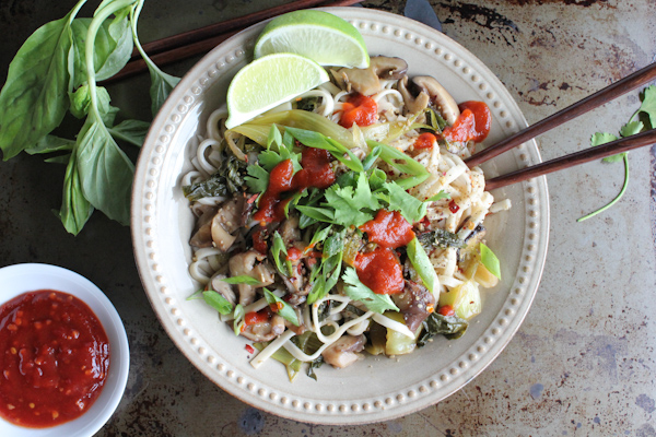 Spicy Asian Noodles upclose | HipFoodieMom.com