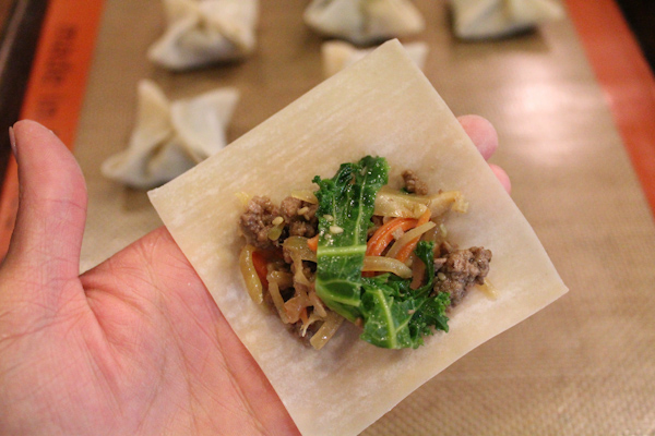 ground beef wonton | Hipfoodiemom.com