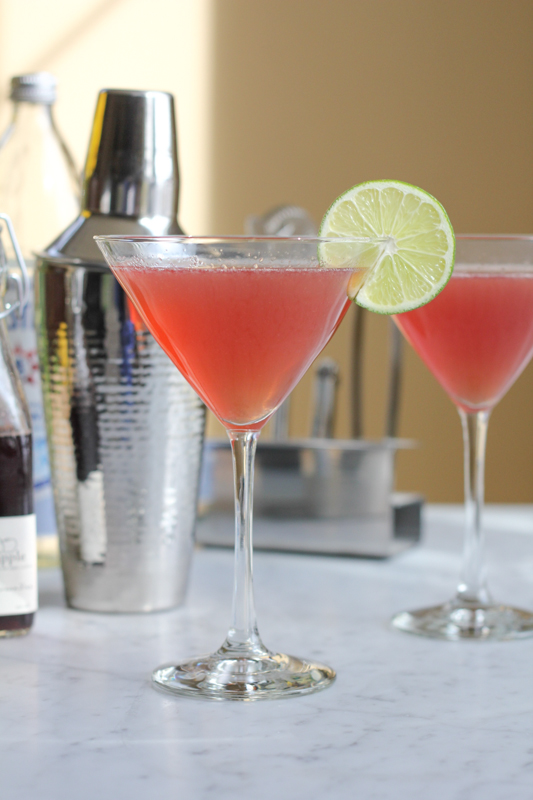 Gin Daisy Cocktails_vertical | HipFoodieMom.com
