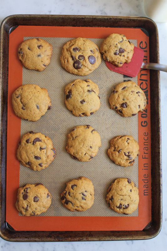 Pumpkin Peanut Butter Chocolate Chip Cookies_fresh out of the oven