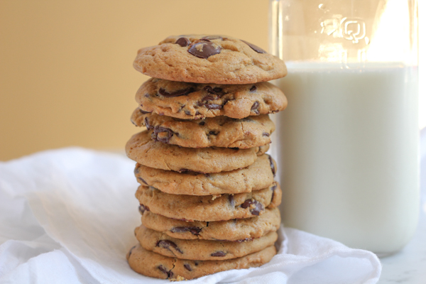 Pumpkin Peanut Butter Chocolate Chip Cookies_main
