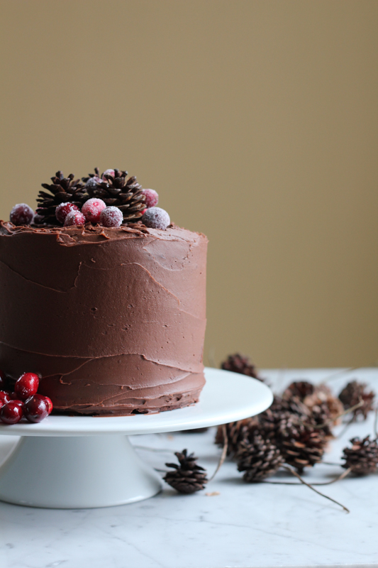 homemade chocolate cake beautifully decorated with red wine chocolate frosting
