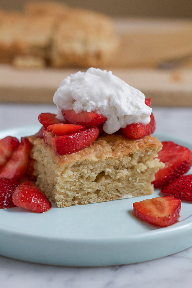 Vegan Strawberry Shortcake with Coconut Whipped Cream! A twist on the traditional Strawberry Shortcake and made with cold coconut milk and coconut sugar. I hope you give this one a try!
