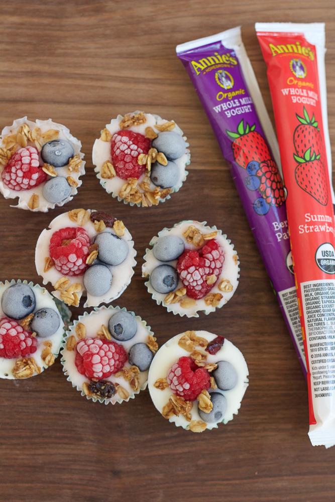 Frozen Berry Yogurt Bites and yogurt tubes.