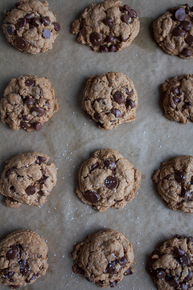 Paleo Chocolate Chip Cookies made with a flax egg, coconut flour, almond flour, coconut sugar, almond butter and more!