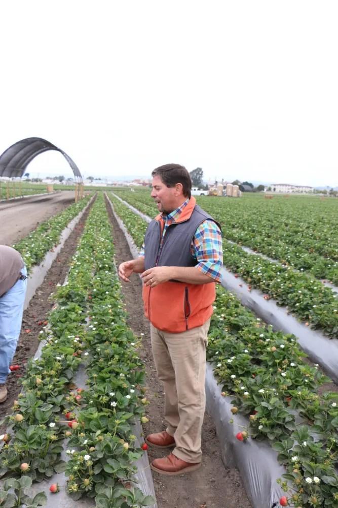 California strawberry farm tour.