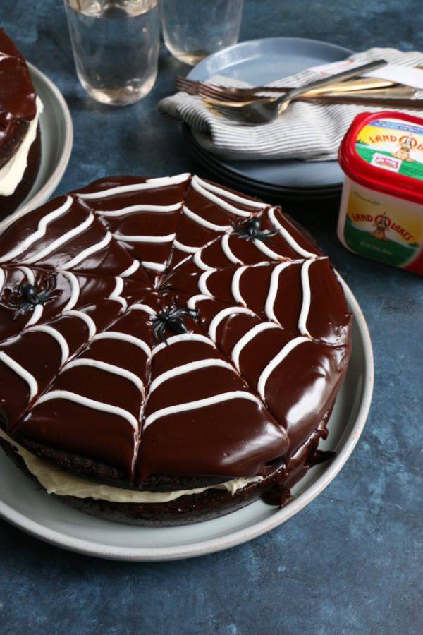 Double Chocolate Spider Web Cake! Perfect for Halloween! It's fun, festive and delicious and the kids can help you make it!