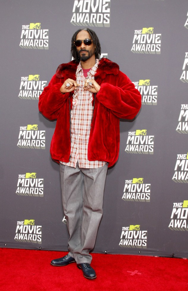 Snoop Lion at the 2013 MTV Movie Awards