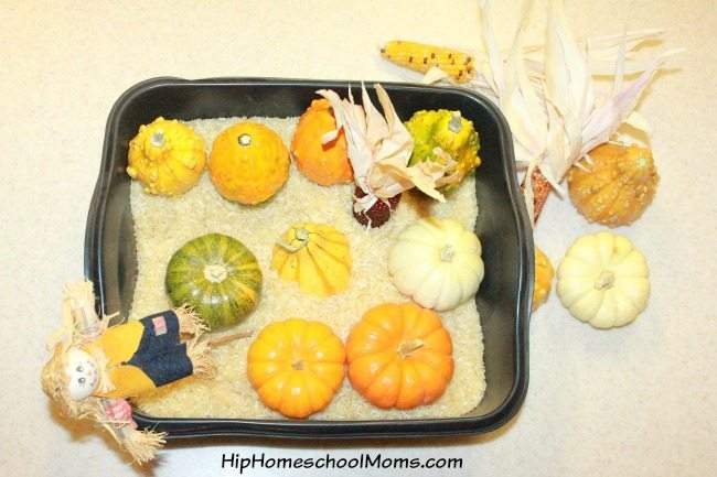 Fall Sensory Bins for Preschoolers