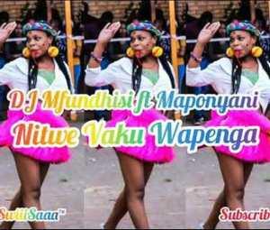 Dj Mfundisi ft. Maponyani – Nitwe Vaku Wapenga Mp3 Download Fakaza