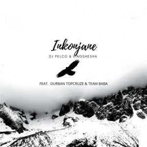 Download Mp3 Dj Pleco & Kingshesha – Inkonjane (feat. Durban TopCruze & TeamBaba)