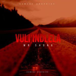 Mr Shona - Vul'indlela Mp3 Download Fakaza