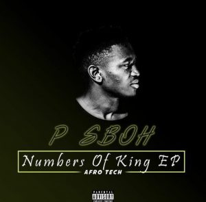 P Sboh Nineteen ft Vida Soul Mp3 Download Fakaza