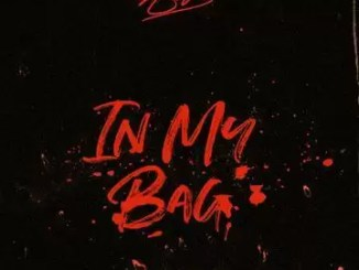 Ace Hood – In My Bag (WORLD PREMIERE Freestyle)
