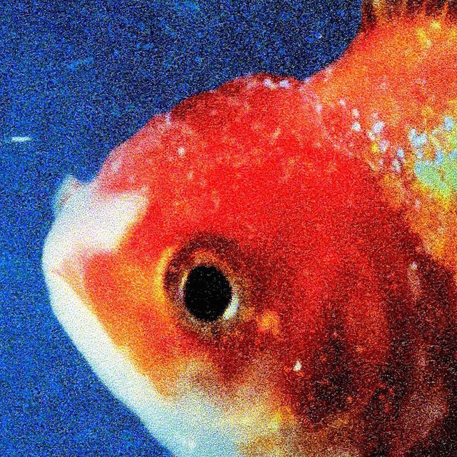 Image result for vince staples big fish theory album cover