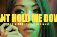 (Video) SGD Vedoe feat. Insomniac Lambs – Can't Hold Me Down @SGDVedoe @INSOMNIACLAMBS