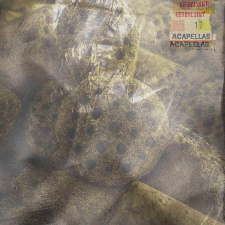 Verbal Jint - 17 Acapellas (album cover)