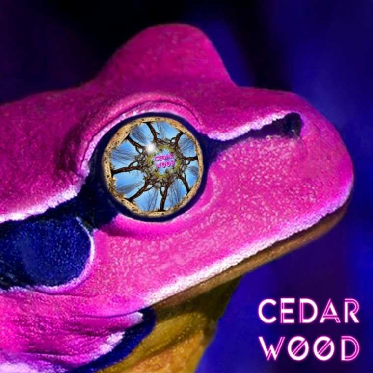 CedarWOOD - See The WOOD Vol. 2 (cover art)