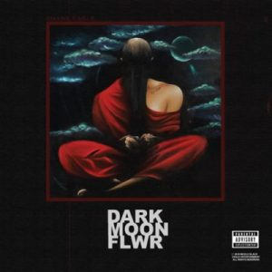 se dark Hip Hop More 20 300x300 - Shane Eagle – Forever Young