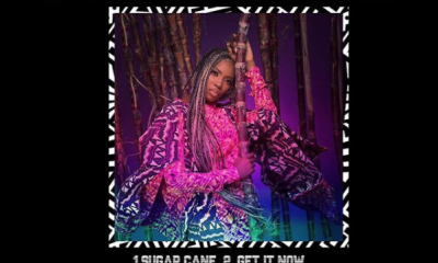 Tiwa savage sugarcane ep artwork Hip Hop More - Tiwa Savage – Sugarcan