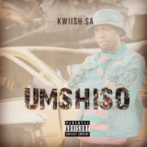 k Hip Hop More 300x300 - Kwiish SA & DJ Phat Cat – Ka Painelwa ft. Steven Lee Lewis