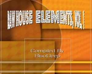 BisoDeep – Raw House Elements Vol. 1 mp3 download zamusic Hip Hop More 5 - LeJazz – Dont Leave (Tech Experience)