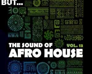 Nothing But… The Sound of Afro House Vol. 13 mp3 download zamusic Hip Hop More 3 - Pippi Ciez – Diourbe