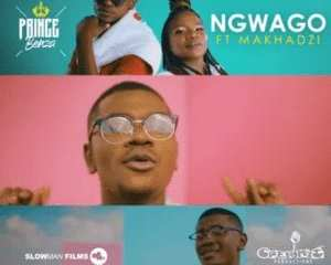 Prince Benza Makhadzi – Ngwago mp3 download zamusic Hip Hop More - Prince Benza & Makhadzi – Ngwago