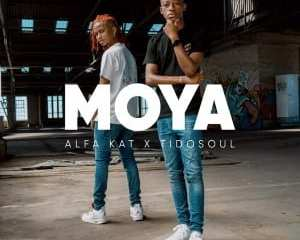 Alfa Kat TidoSoul – Falling Ft. Leandra Vert mp3 download zamusic Hip Hop More 1 - Alfa Kat & TidoSoul – Taxi Taxi Ft. Benny Chill, 031 Choppa & NELCNO