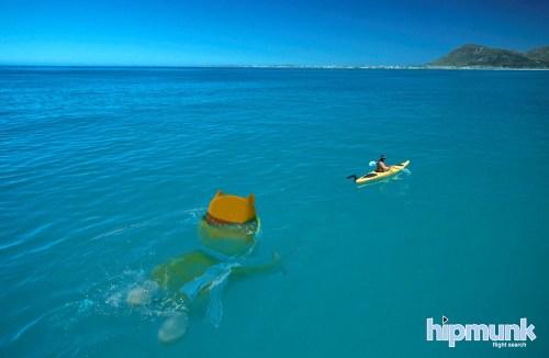 Hipmunk-kayak-redux-final