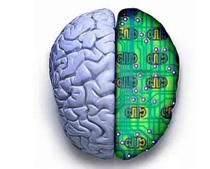 cerebro computadora