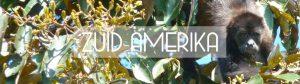 Zuid-Amerika header