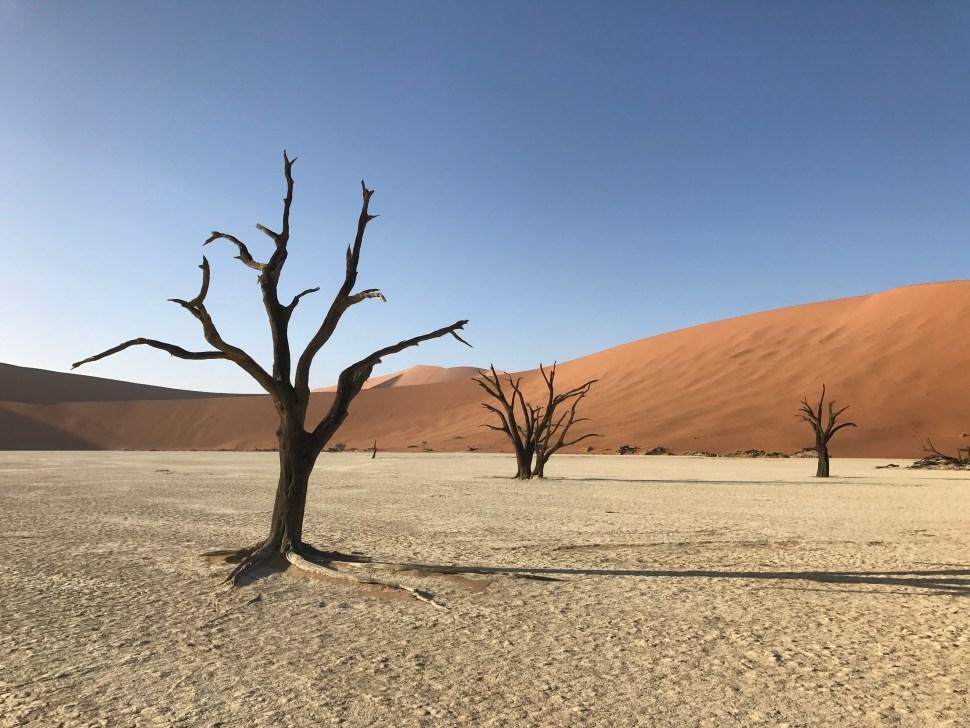Wandelen naar Deadvlei Namibië