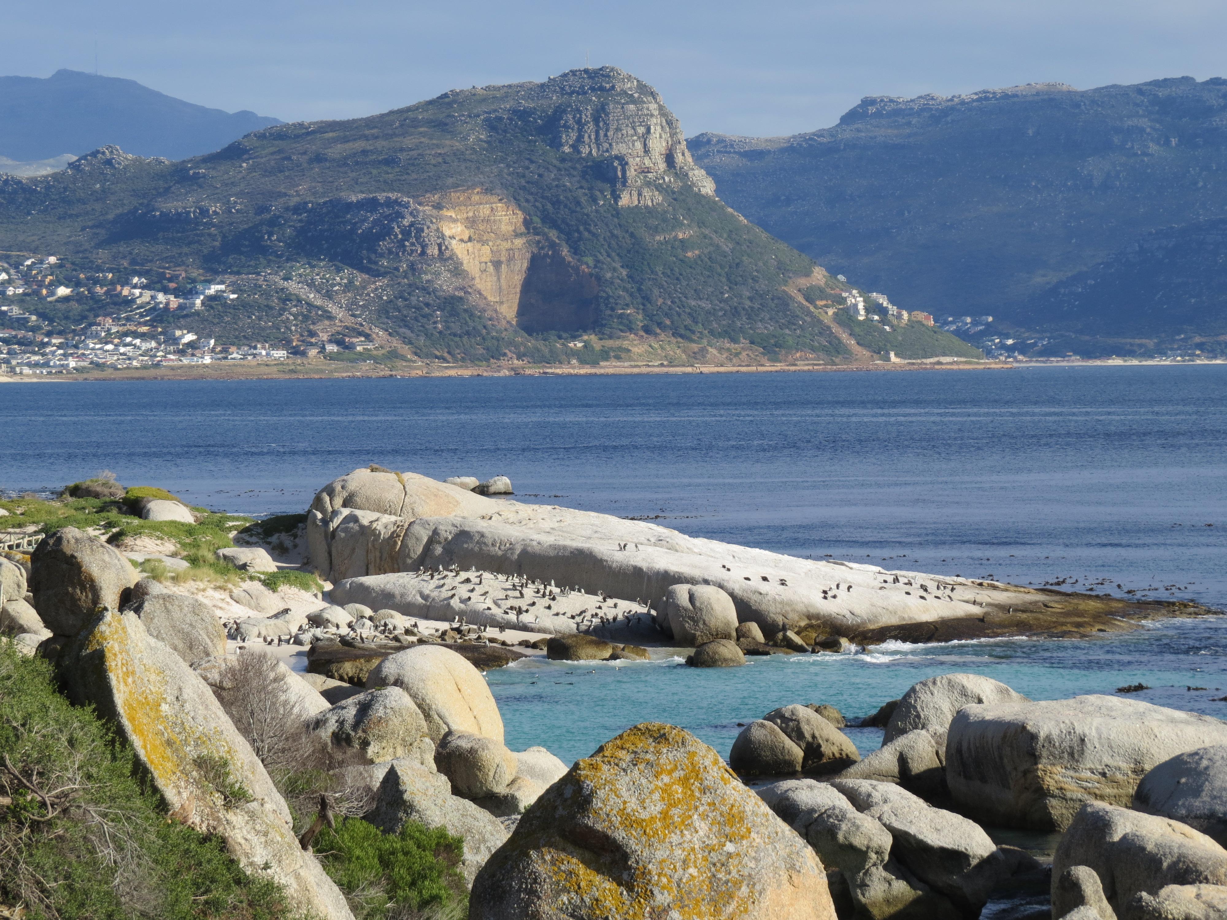 Boulders Beach Zuid-Afrika