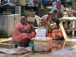 Negombo vismarkt Sri Lanka