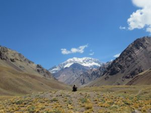 Uspallata Vallei regio Mendoza Argentinie